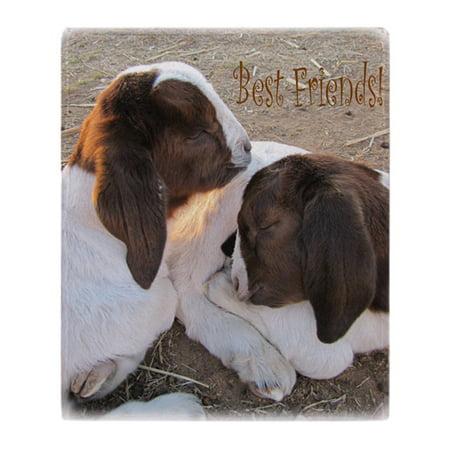 CafePress - Best Friends! - Soft Fleece Throw Blanket, 50