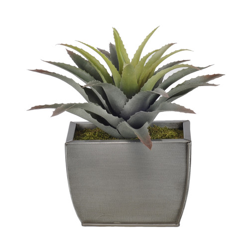 House of Silk Flowers Inc. Artificial Star Succulent Desk Top Plant in Decorative Vase