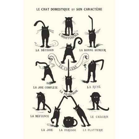 Le Chat Domestique Poster Print, 24x36, Poster Title: Le Chat Domestique By Generic