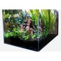 Crystal Aquarium from Lifegard Aquatics Ultra Clear Low Iron Glass 3.8 Gallons Built in Side Filter