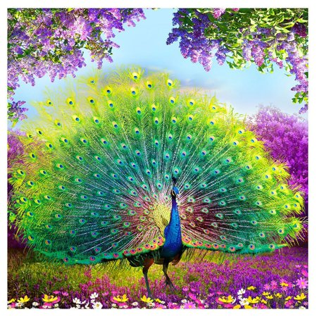 Cluxwal 5D DIY Diamond Canvas Painting,Crystal Embroidery Cross Stitch Crafts, Childrens Paint by Number Kits, Partial Pasting Area - Peacock
