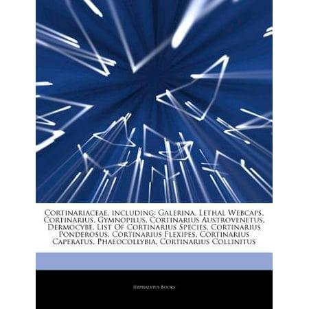 Articles on Cortinariaceae, Including: Galerina, Lethal Webcaps, Cortinarius, Gymnopilus, Cortinarius... by