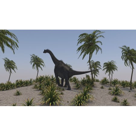 Brachiosaurus Poster - Large Brachiosaurus roaming a prehistoric environment Poster Print