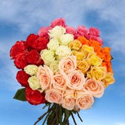 GlobalRose 250 Fresh Cut Assorted Color Roses - Fresh Flowers Wholesale Express Delivery