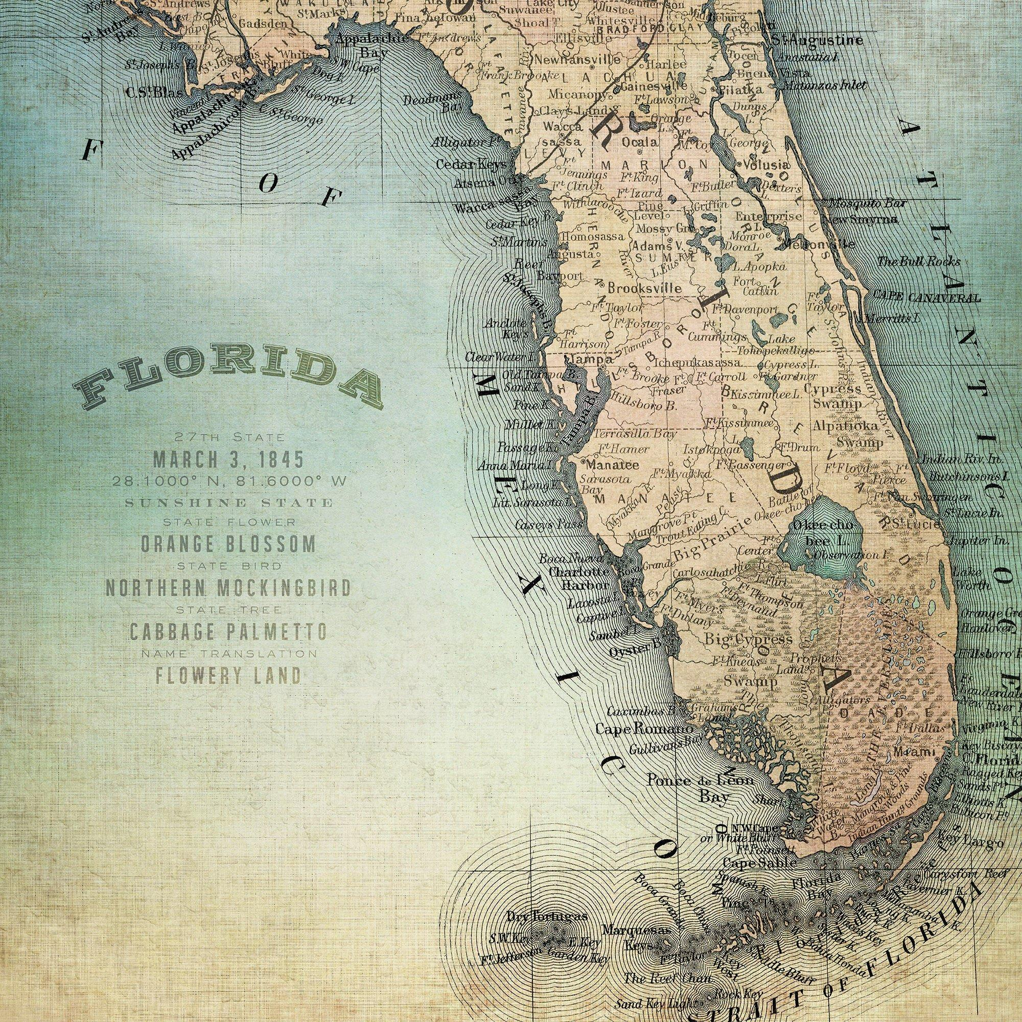 Palm Island Home Florida Map Wall Art One Size