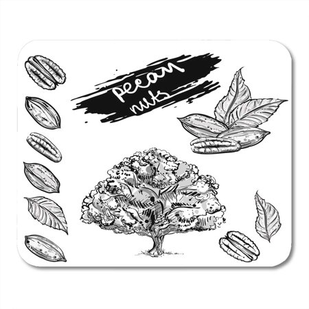 - KDAGR Food Black Collection Gray Scale of Pecan Nuts Leaf Tree Sketch 8 Drawing Fruit Mousepad Mouse Pad Mouse Mat 9x10 inch