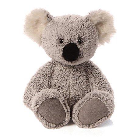 Koala Animals (William Koala 15