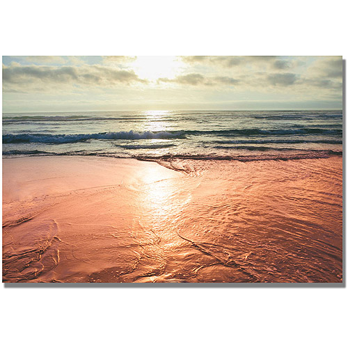 "Trademark Fine Art ""Sunset Beach Reflections"" Canvas Wall Art by Ariane Moshayedi"