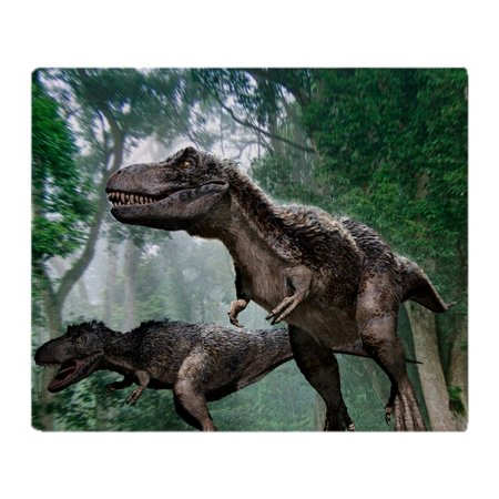 CafePress - Tyrannosaurus Rex Dinosaurs - Soft Fleece Throw Blanket, 50