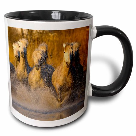 3dRose France, Provence. Seven white Camargue horses running in water. - Two Tone Black Mug, 11-ounce ()