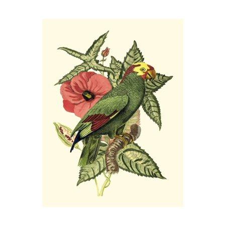 Tropical Birds and Botanicals I Print Wall Art