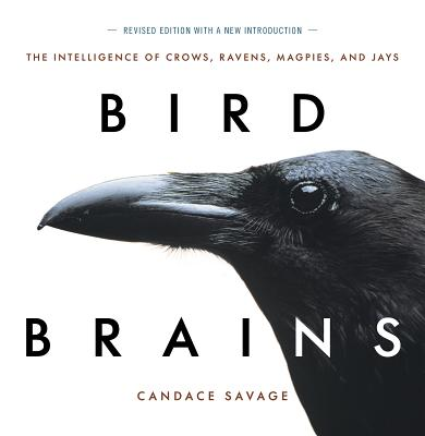 Bird Brains : The Intelligence of Crows, Ravens, Magpies, and Jays