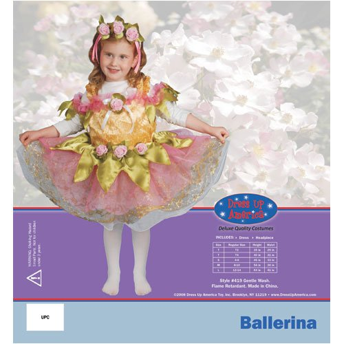 Dress Up America 419-L Ballerina Girls Costume, Large - Age 12 to 14