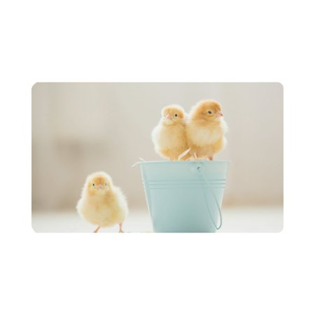 MKHERT Cute Baby Chicks Yellow Little Chicken Doormat Rug Home Decor Floor Mat Bath Mat 30x18 inch