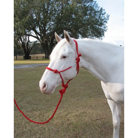 Hamilton Halter Company-Adult Horse Rope Halter With Lead- Red Average -