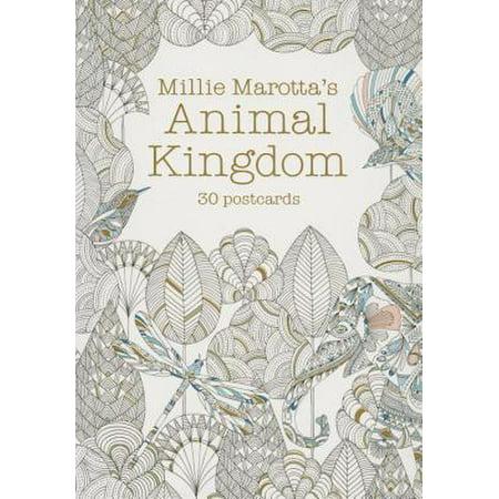 30% Post Consumer Material - Millie Marotta's Animal Kingdom : 30 Postcards