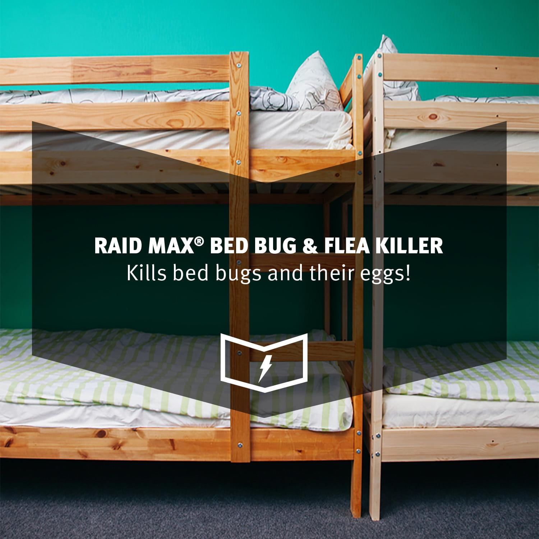 Raid Max Bed Bug U0026 Flea Killer, 17.5oz   Walmart.com