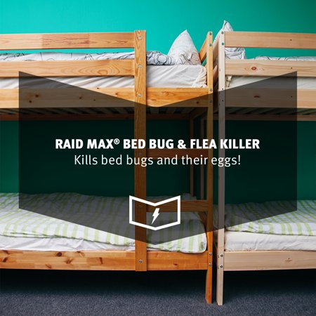 Raid Max Bed Bug Flea Killer Best Insect Pest Control