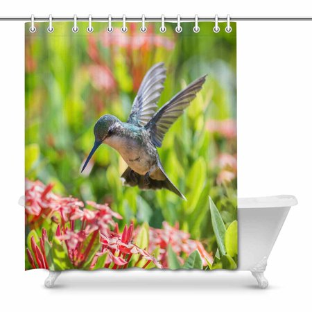 MKHERT Beautiful Hummingbird Feeding Red Flowers Home Decor Waterproof Polyester Fabric Shower Curtain Bathroom Sets 66x72 (Hummingbird Red Flowers)