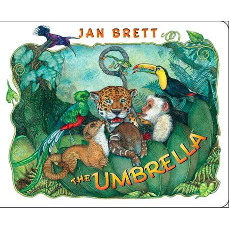 Umbrella (Board Book)