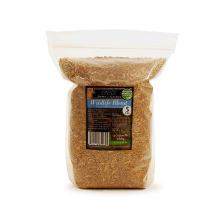 (22029) Eretz Oregon Grown Grass Seed - Wildlife Food Plot Forage Blend (5lbs) thumbnail
