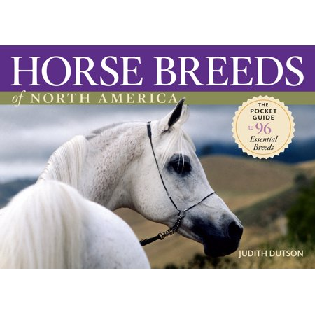 Horse Breeds of North America - Paperback (Horse Breeds)