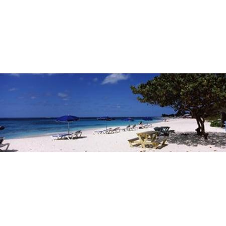 Beach chairs on the beach Shoal Bay Beach Anguilla Canvas Art - Panoramic Images (36 x 13)