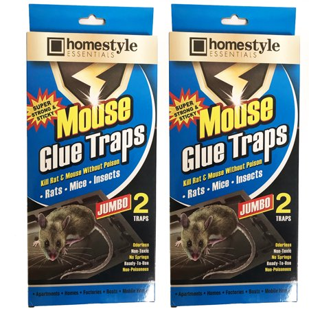 4 Pc Jumbo Size Glue Sticky Trap Rat Mouse Snake Trays Peanut Scent Pest