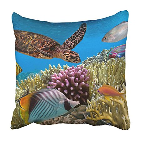 CMFUN Animal Green Turtle Swimming in Blue Ocean Red Sea Aqua Caribbean Color Coral Pillowcase Cushion Cover 20x20 inch - Caribbean Blue Color