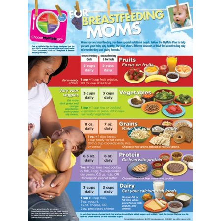 Learning Zone Poster - MyPlate for Breastfeeding Moms Poster Laminated Poster - 18x24