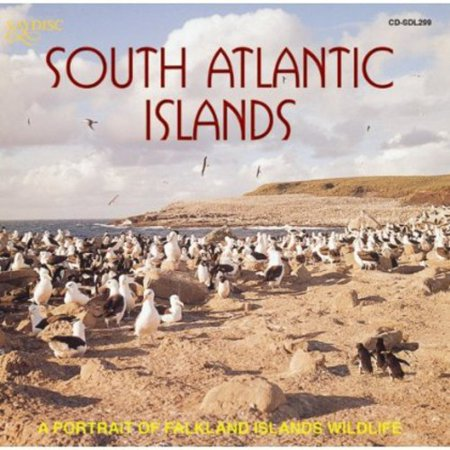 South Atlantic Islands: A Portrait Of Falkland Islands Wildlife