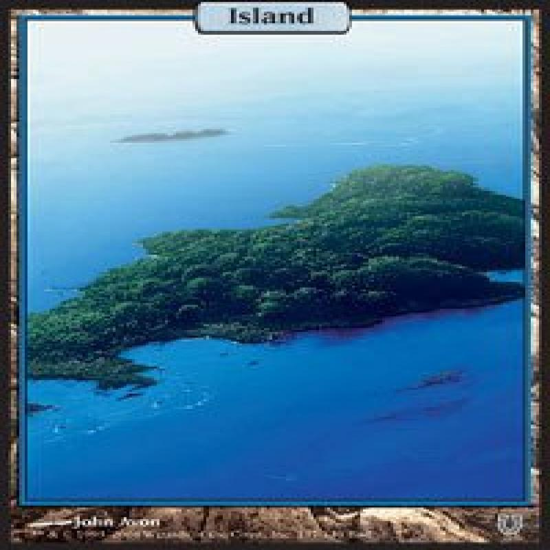 Wizards Of The Coast Magic: the Gathering - Island - Unhi...