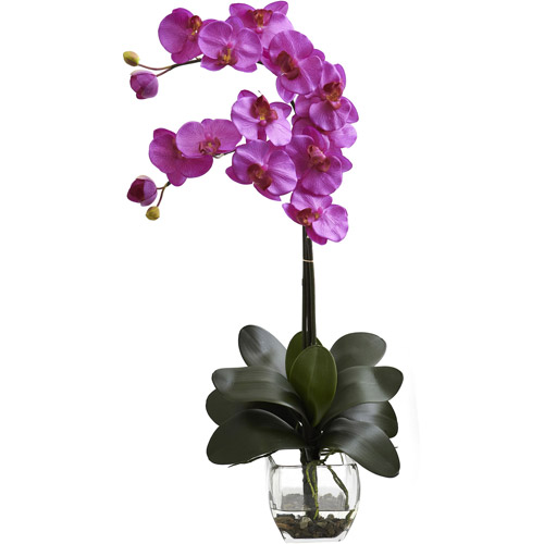 Nearly Natural Double Phalaenopsis Orchid with Vase Arrangement, Orchid