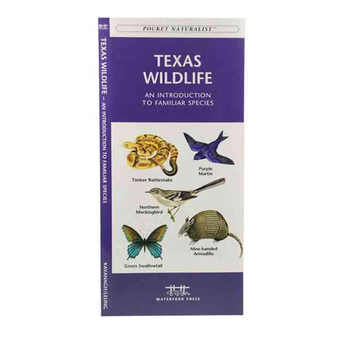 Texas Wildlife: An Introduction to Familiar Species