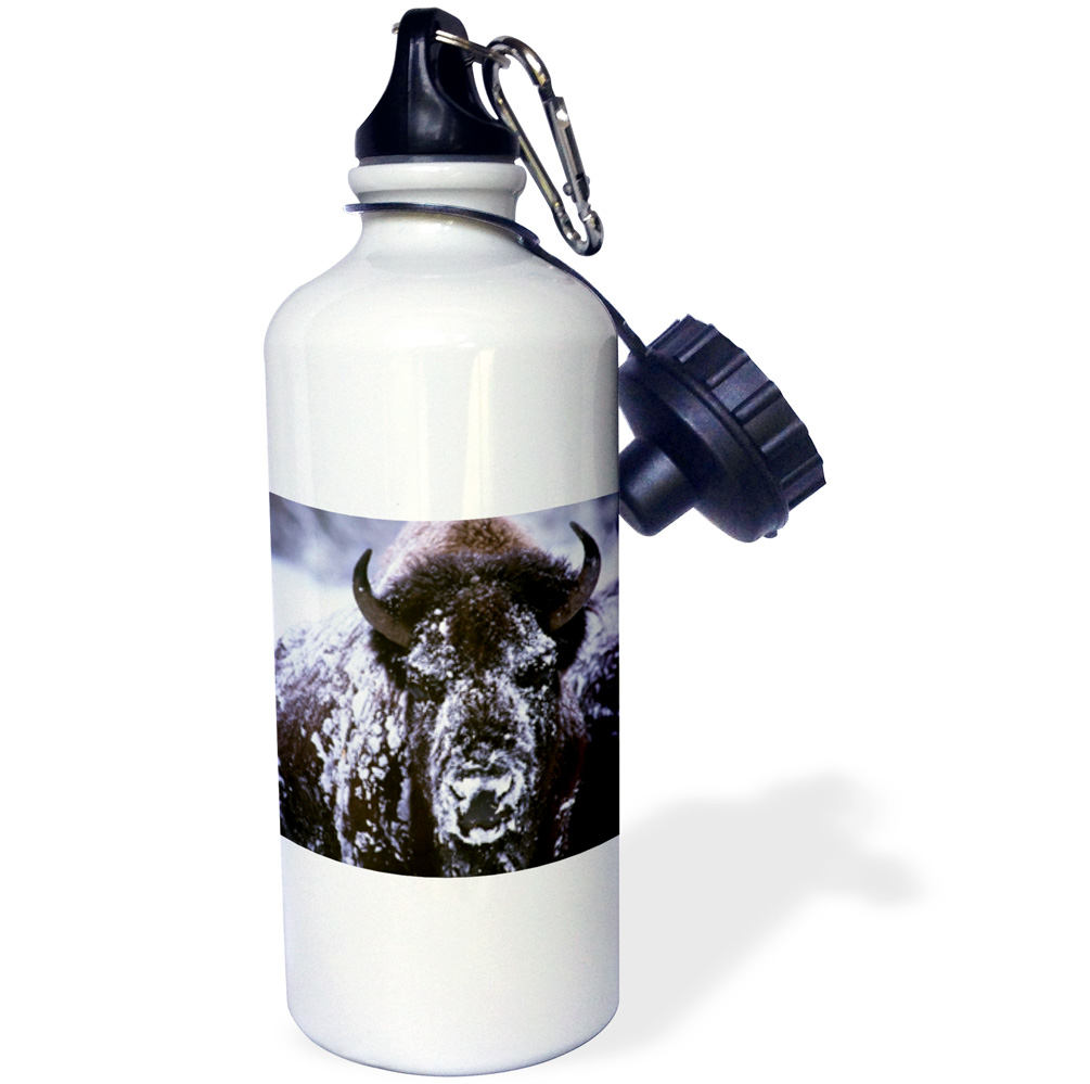 3dRose Yellowstone NP, Bison in Winter US51 CSL0007 Charles Sleicher, Sports Water Bottle, 21oz by Supplier Generic
