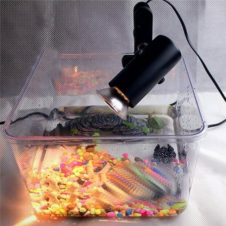 300W 220V Ceramic Heat UV UVB Lamp Light Holder Brooder For Chicken Reptile - 220v Lamp