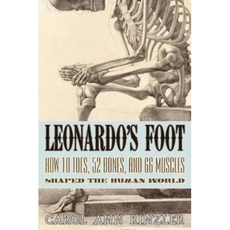 Leonardos Foot  How 10 Toes  52 Bones  And 66 Muscles Shaped The Human World