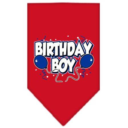 Birthday Boy Screen Print Bandana Red Small