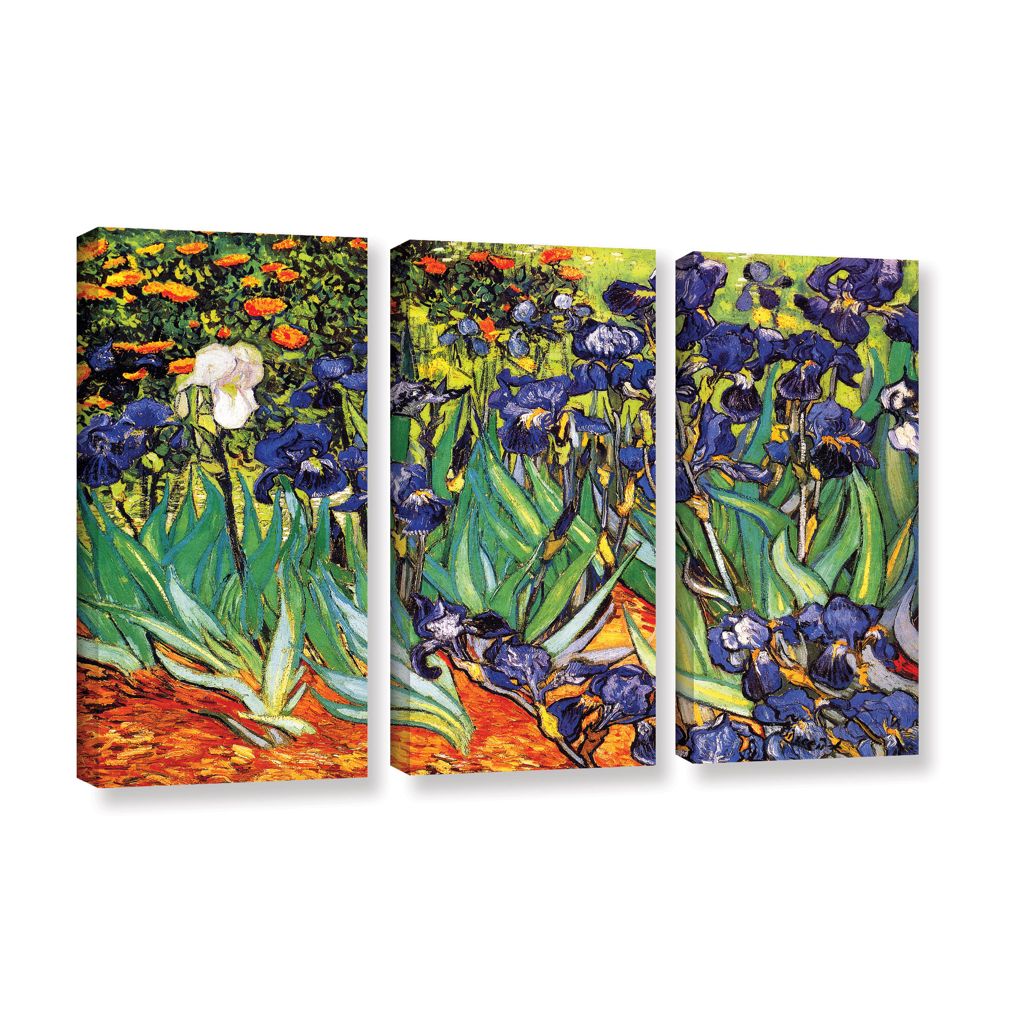 Irises in the Garden' Gallery wrapped Canvas Art Print