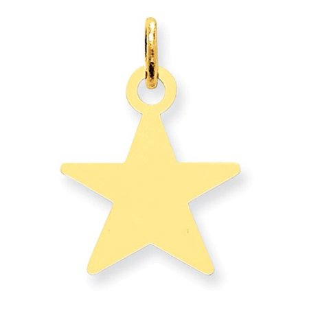 14k Yellow Gold Engravable Polished Star Disc Charm (0.9in long x 0.6in wide)
