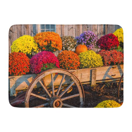 GODPOK Tan Autumn Orange Fall Vintage Wagon with Colorful Flowers Against Old Weathered Barn Red Pumpkin Yellow Rug Doormat Bath Mat 23.6x15.7 inch ()