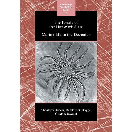 The Fossils of the Hunsruck Slate: Marine Life in the Devonian