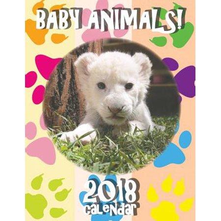 Baby Animals! 2018 Calendar (UK Edition)