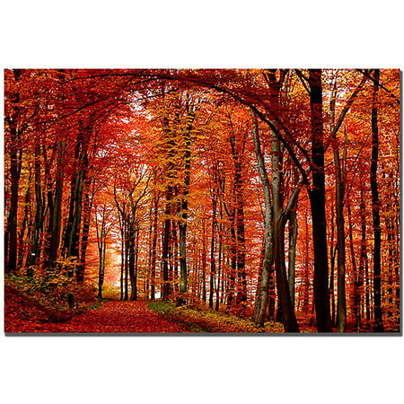 Trademark Art The Red Way Canvas Art by Philippe Sainte-Laudy