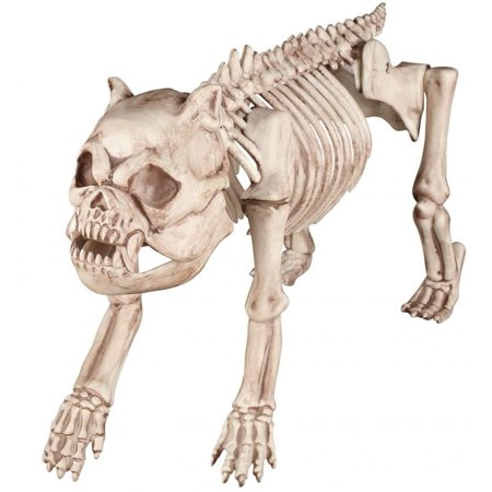 Bag Of Bones Halloween Props (Bones the Bulldog Skeleton)