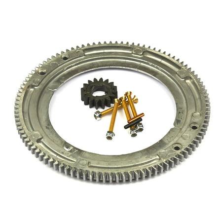 Briggs and Stratton Flywheel Ring Gear ()