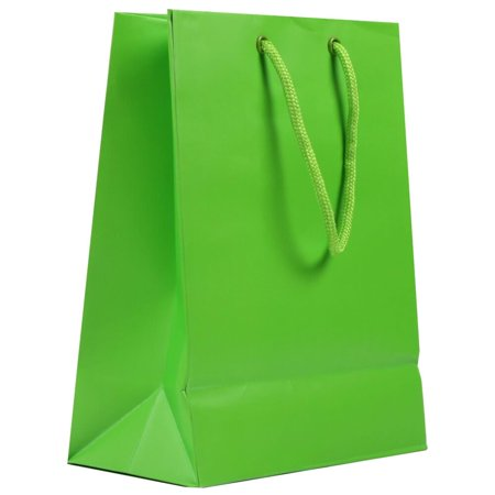 JAM Paper Gift Bags, Medium, 8