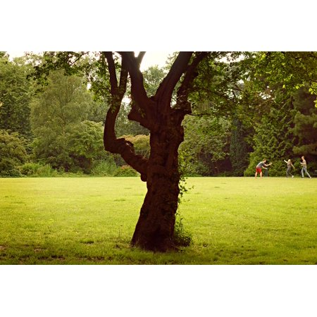 Framed Art For Your Wall Game Lawn Park Recreation People Ball Game Tree 10x13 Frame](Halloween Party Parks And Recreation)