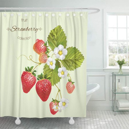 XDDJA Realistic of Strawberry Leaves and Flowers Light Green Shower Curtain 60x72 inch - image 1 of 1