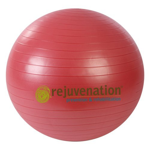 Rejuvenation Complete Support and Stability Ball
